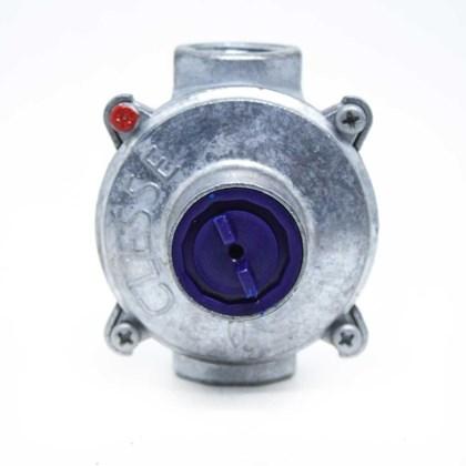 "Regulador De Gás Estabilizador Expert 10 M3 /H 1/2"" NPT"